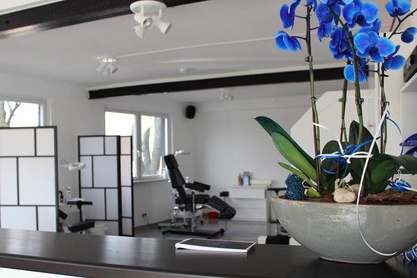 wichsfreunde piercing studio fulda